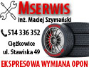 MSERWIS v2